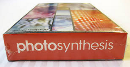 photosynthesis-vhs-chef-family-brian-panebianco